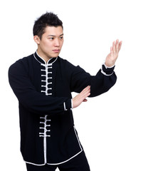 Pose of defense in chinese kung fu