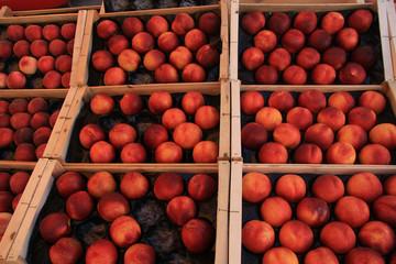 Nectarines at a market