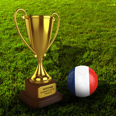 3d France Soccer Cup and Ball with Grass Background - isolated