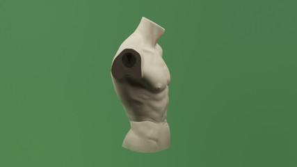 male torso isolated on chroma green screen background full