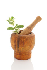 Mortar with fresh mint isolated