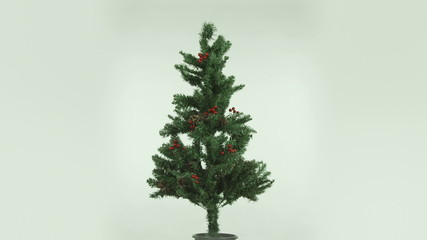christmas tree isolated on white background cut out full