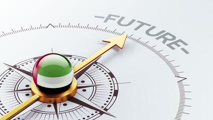 United Arab Emirates. Future Concept
