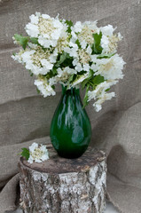 guelder rose still life bouquet