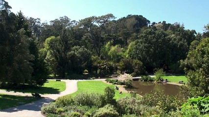View of San Francisco Botanical Garden. California