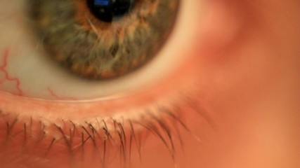 Extreme macro of a human eye green and brown