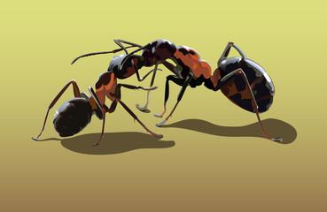 love of ants