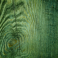 Wooden wall as green background or texture
