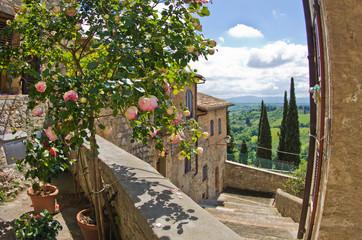 Roses on balcony, cityscape of San Gimignano, Tuscany landscape