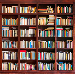 Bookshelf full with books