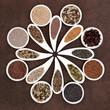 Seed Food Sampler