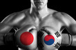B&W fighter with Japan and South Korea color gloves