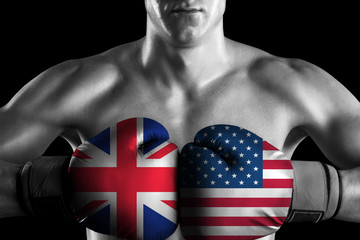 B&W fighter with UK and USA color gloves