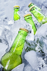 Fresh beer bottles on ice