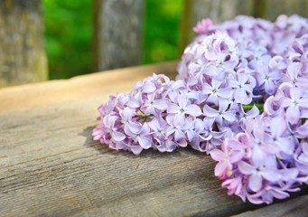Fresh flowers of lilac on a old wooden background