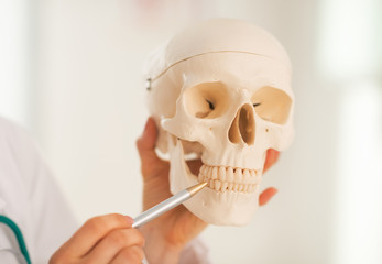Closeup on doctor woman pointing on teeth of human skull