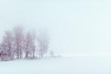 """Постер, картина, фотообои """"Lake at winter"""""""