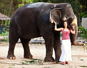 Young pretty woman with elephant in Thailand
