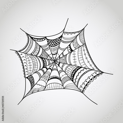 Vector spider-web