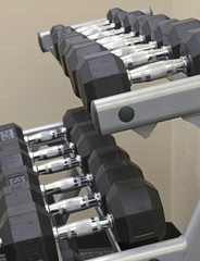 Fitness equipment - Dumbbells on rack in Gym