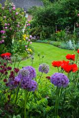 Idyllischer Garten mit Zierlauch und Mohnblumen
