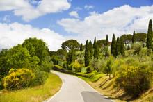 "Постер, картина, фотообои ""Italy. Tuscany. Rural landscape with a road"""