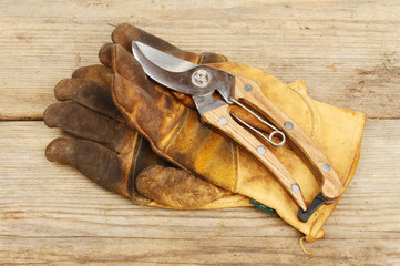 Secateurs and gloves