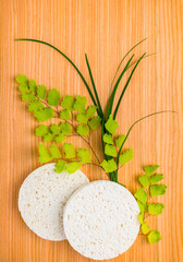 Spa set of sponge with green branches fern on wooden background