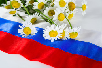 Russian flag and camomiles