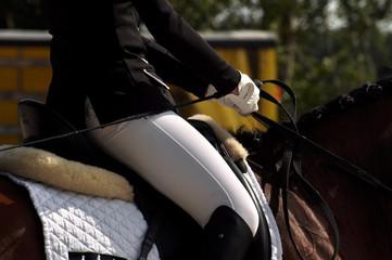 Im Sattel sitzen, das Pferd reiten, zügeln...