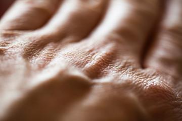 Hand Skin Texture