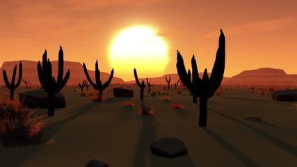 Desert Saguaro Cactus Field 3D animation