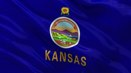 US state flag of Kansas waving in the wind - loop