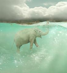 Submarine elephant