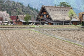 Shirakawa-go - village in Japan