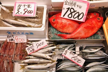 Japan fish market - Tsukiji in Tokyo