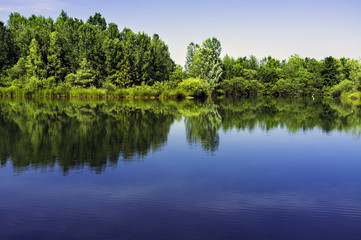 Little artificial lake, Lomellina, color image