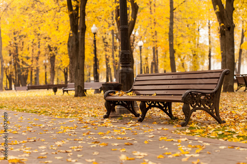canvas print picture Empty bench in park