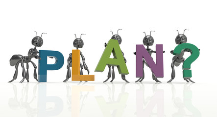 Plan team-black ants-concept