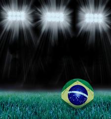 Estádio Brasileiro