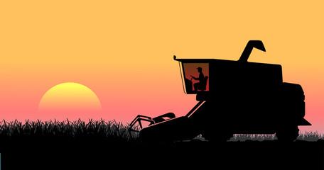 rural landscape, harvesting