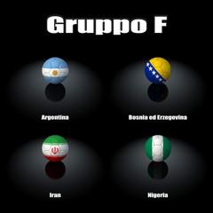 Squadre Gruppo F Brasile 2014