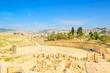 Scenic view of Ruins Gerasa and modern Jerash city in Jordan