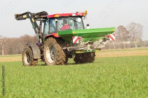 Getreideanbau, Frühjahrsdüngung - 65750597