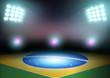 Green soccer field, brazil flag, bright spotlights