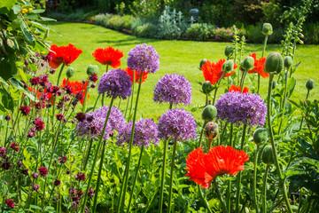 Blumengarten mit Zierlauch und Mohn