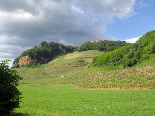 Vineyards and Chateau Chalon village in Jura, France