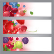 banners with berries