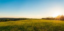"""Постер, картина, фотообои """"Panorama of green meadow at sunset"""""""