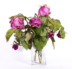 Boquet of dry roses